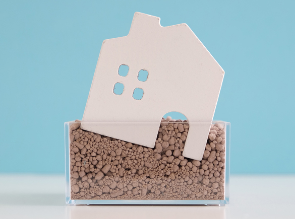 Example of a home which has worked its way down deep in the pebbles