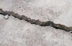 Old Sidewalk Cracked and Heaved